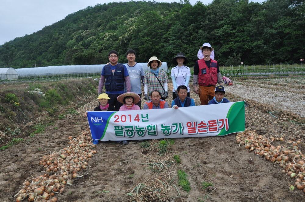 2014년 팔공농협 농가일손돕기 실시2.JPG