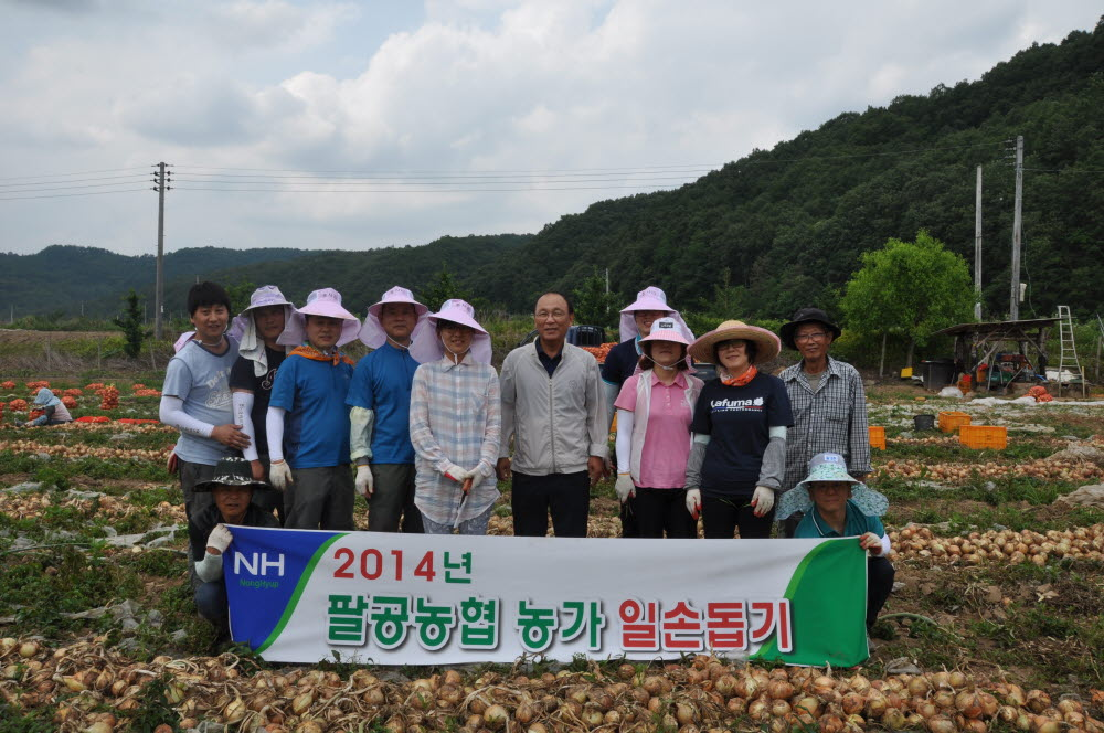 2014년 팔공농협 농가일손돕기 실시4.JPG